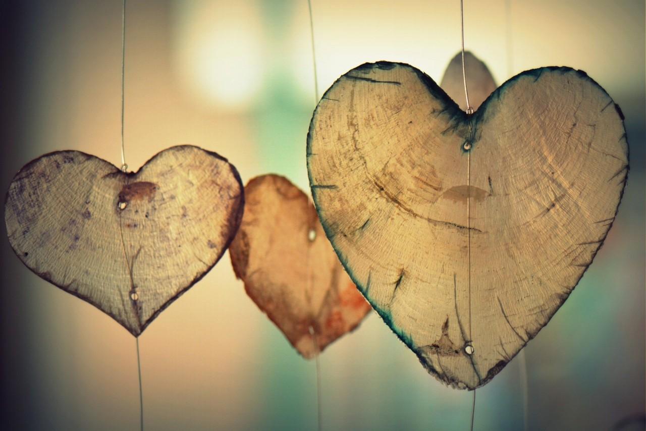 Der Blick ins Herz